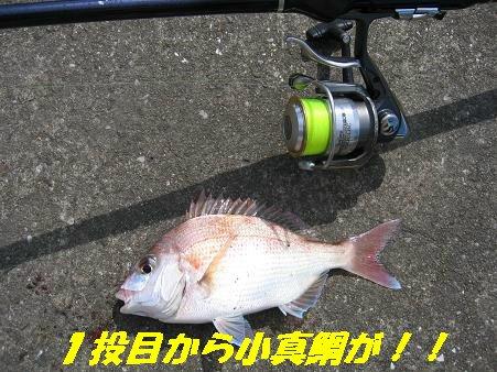 20090921_7