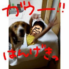 hangeki.jpg