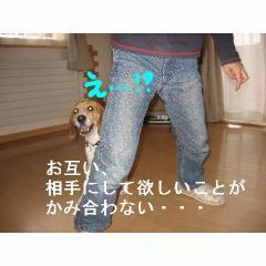kamiawazu.jpg