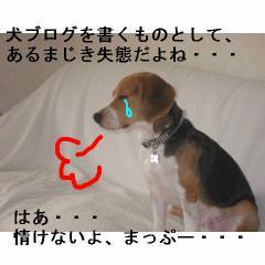 nasake.jpg
