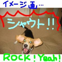rockr.jpg