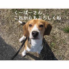 yorosikune.jpg