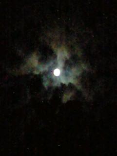 今宵の満月は