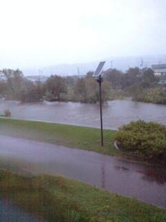 久慈川の堤防