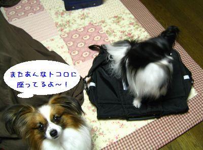 blogIMG_6360.jpg