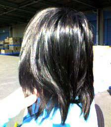 20070131005035.jpg