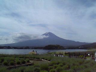 河口湖と富士山とラベンダー畑