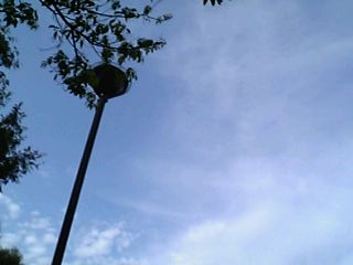 大町中央公園で見上げた空