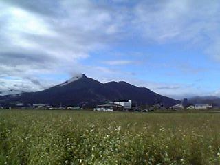 磐梯山と蕎麦畑、白鳥浜より