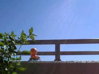 青空の下、太陽光線が降り注ぐ