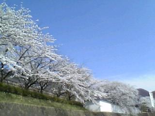 会津武家屋敷前にて。