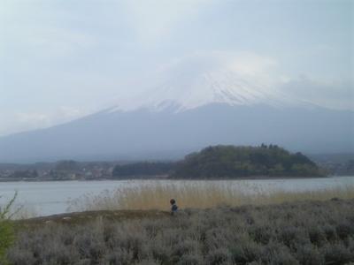 大石公園から眺めた富士山