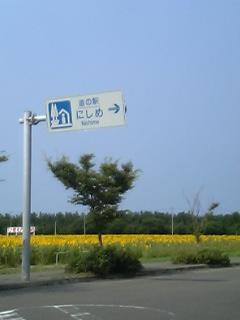 ひまわり畑@道の駅にしめ