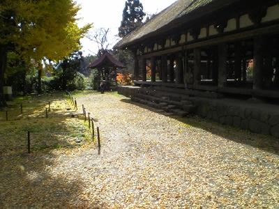 新宮熊野神社、長床と大イチョウ
