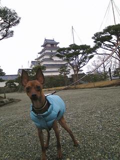 鶴ヶ城とアクア