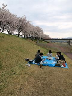 桜オフ参加メンバー@宮川の千本桜