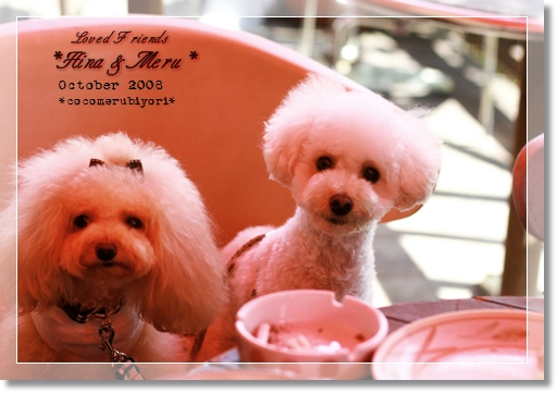 2008-10-Loved Friends-MeruHina