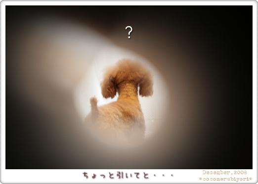 なんだコレ?-01