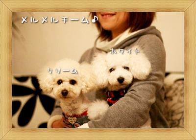 2008-12-22-続き-02