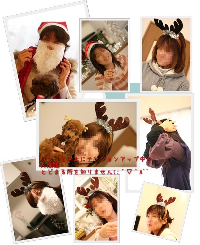 2008-12-22-続き-人間たち・・・