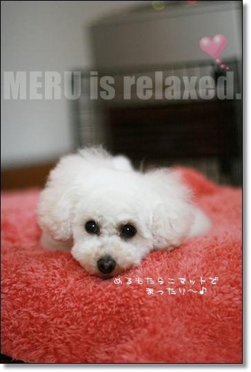 ダブルハート-meru