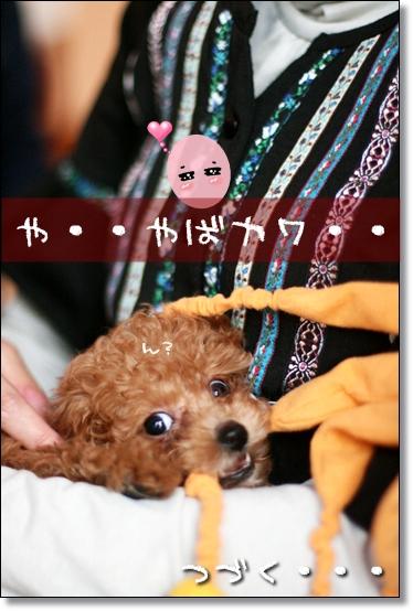 2009-01-14-あくび-