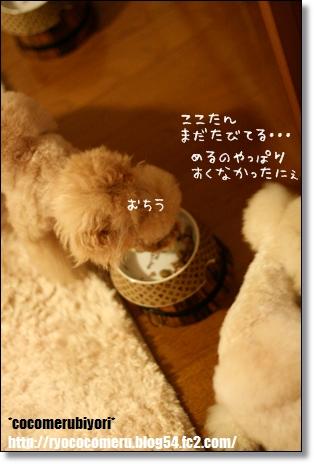 食いしん坊バンザイ 食事中3