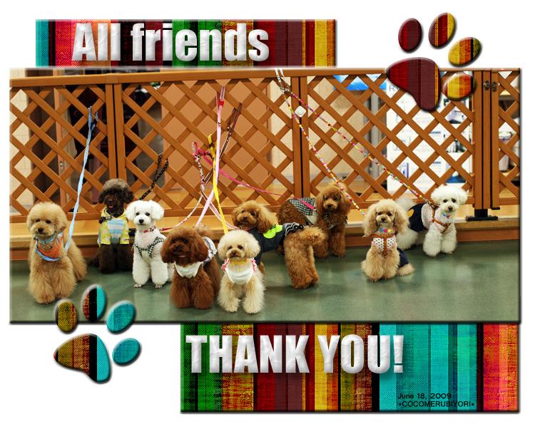 all-friends.jpg