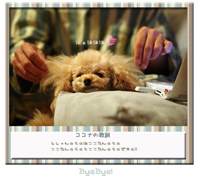 end_20090717122419.jpg