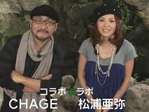 松浦亜弥さん専門ブログ あやや 11月25日放送コラボラボ1