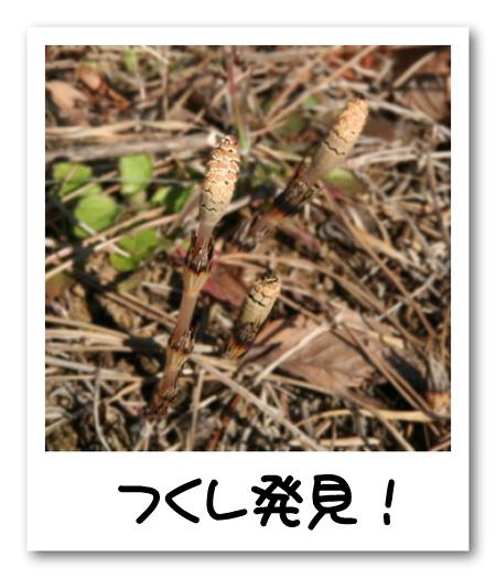 frame8952632.jpg
