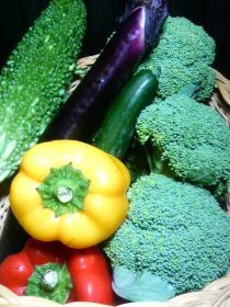 20080819お野菜達