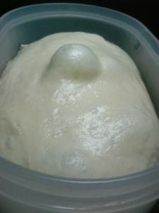20081126りんご酵母種一次発酵