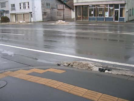 fuyu1_20081221104238.jpg