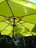 parasol0001.jpg