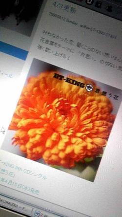 wくぇうぇうぇうぇImage248dfsdfsafefa_convert_20090424220018