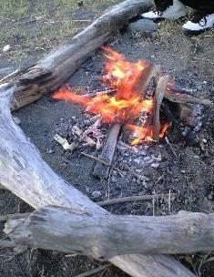 伊豆焚き火