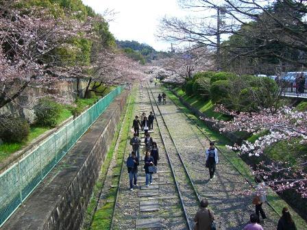 京都ライン