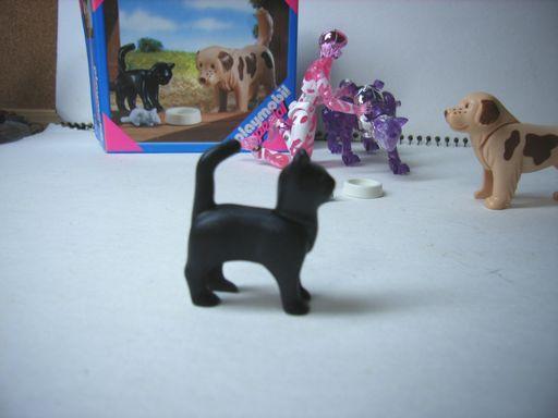 犬とネコとネズミ  5