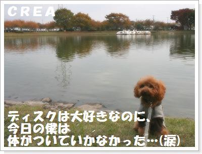 IMG_5558[1]