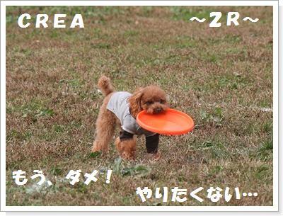 IMG_5454[1]