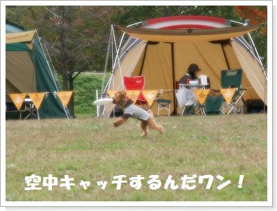 IMG_5427[1]