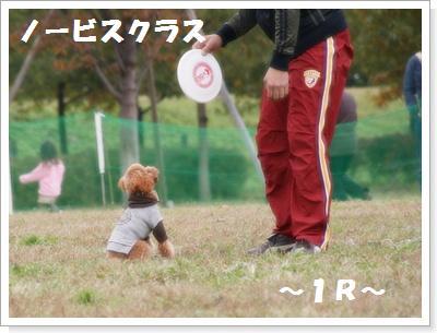 IMG_5423[1]