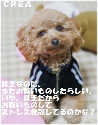 IMG_5698[1]