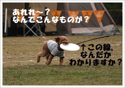 IMG_5902[1]
