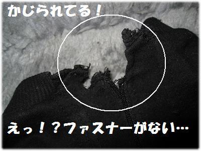 IMG_1691[1]