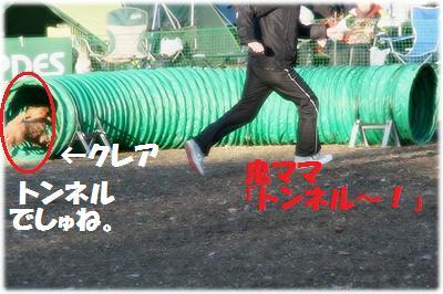 IMG_7586[2]