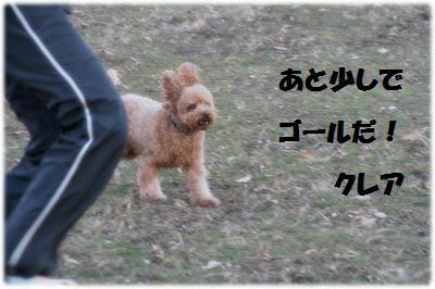 IMG_7591[1]