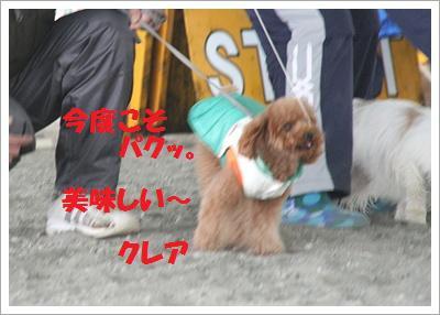 IMG_8018[1]