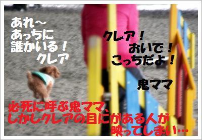 IMG_8099[1]